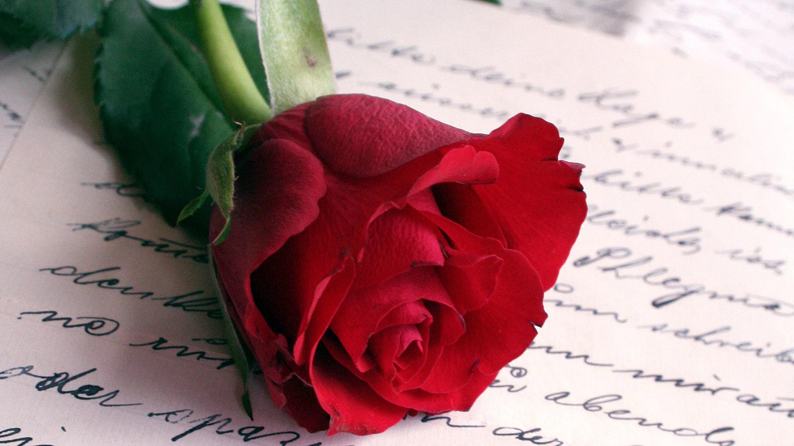 Hedendaags SMS liefdesgedichten - Lees het gedicht 'Goedemorgen' op JR-07
